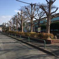 団地公園 (1)