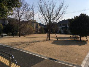 はるさん公園-芝生1