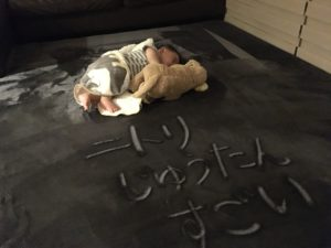 ニトリ絨毯